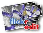 flickr0.jpg